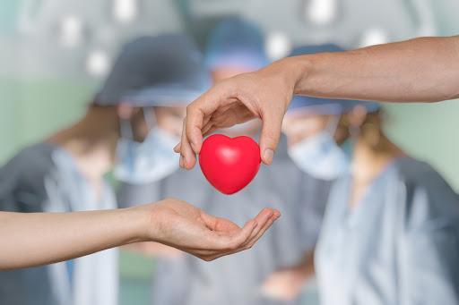 14 de octubre, Día Mundial de la Donación de Órganos